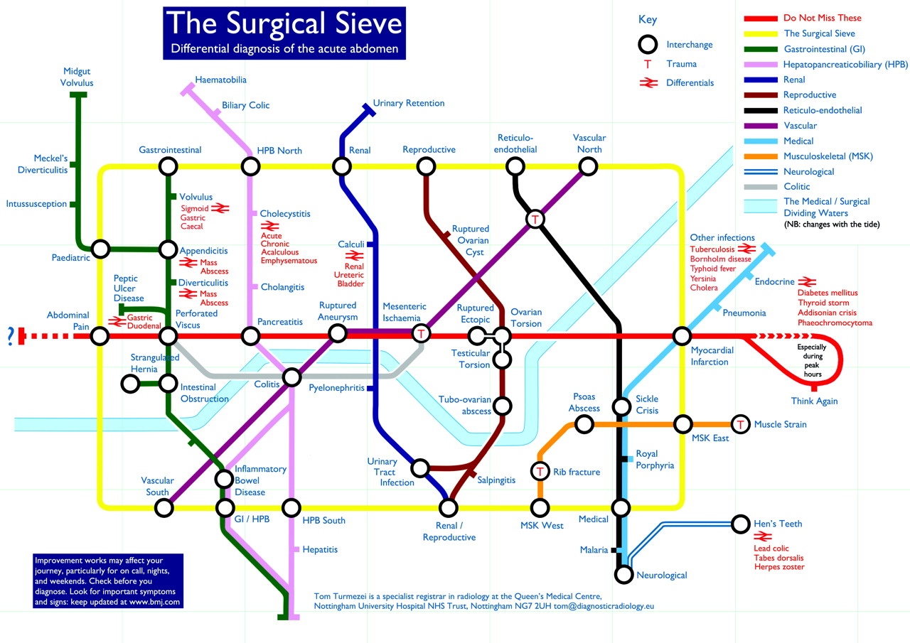 Surgical_Sieve_large